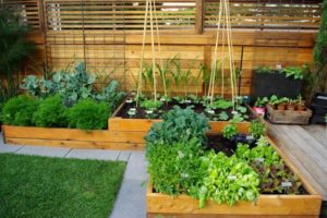 vegetable-garden-designs-raised-bed-ideas-2[1]